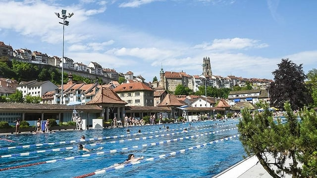 Schwimmbecken, dahinter die Altstadt von Freiburg