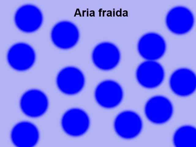 Aria fraida