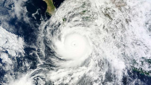 Satellitenbild des Hurrikans über der Baja California.