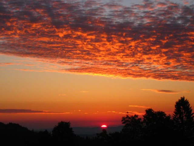 Am unteren Bildrand in schwarz Konturen von Bäumen. Am Horizont ist die Sonnenscheibe knapp zu sehen. Der Himmel ist orange, rot und pink. Am oberen Bildrand sind angeleuchtete Wolken zu sehen.