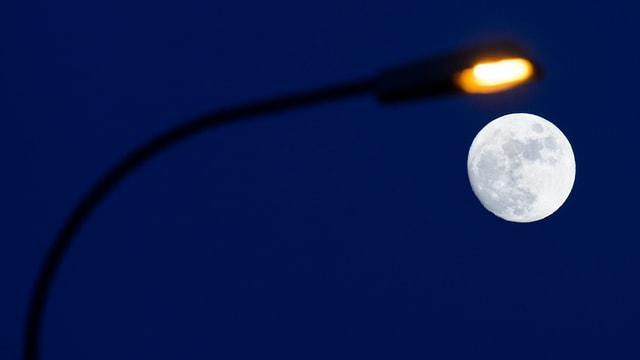 Laterne und Mond