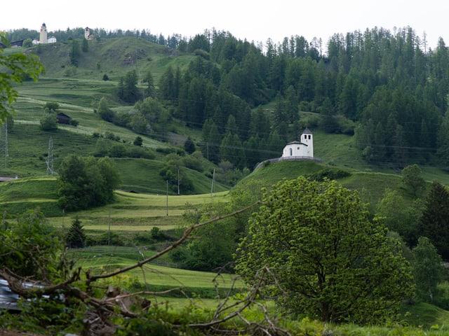 Ruhe und ganz viel grün. Die wunderschöne Landschaft von Donat.