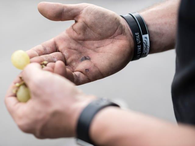 Die Hände von Roger Widmer