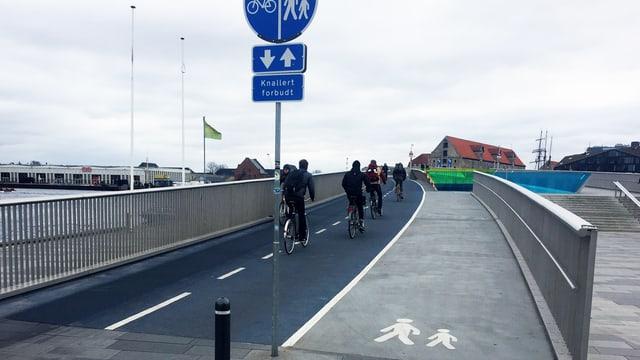 Brücke mit einer Spur für Velos und einer Spur für Fussgänger.
