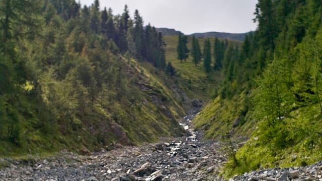 So wie dieser Bach, könnte auch die Entlebucher Waldemme austrocknen, befürchten die Umweltverbände.