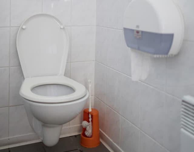 Zu sehen ist eine Toilette.