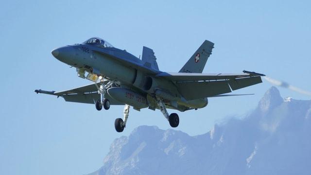Symbolbild  F/A 18 in der Luft