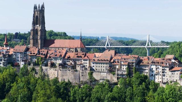 Das Städtchen Freiburg mit Kathedrale und der weissen Poya-Brücke im Hintergrund.