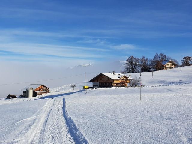 Eine schneebedeckt Strasse führt zu einem Gehöft, im Hintergrund Nebelschwaden, eine Bergspitze ragt hervor, es ist sonnig.