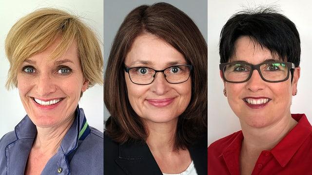 Portraits der Experten