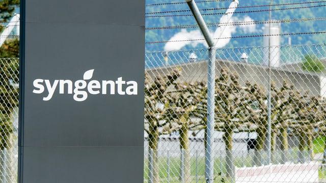 In bajetg dal concern d'agro-chemia svizzer Syngenta che ha preschentà sias cifras.