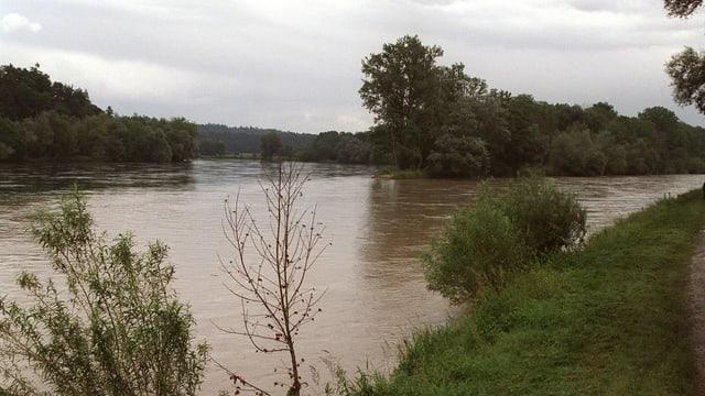 Rhein (links) und Thur (rechts) aufgenommen im 2000 am Thurspitz.