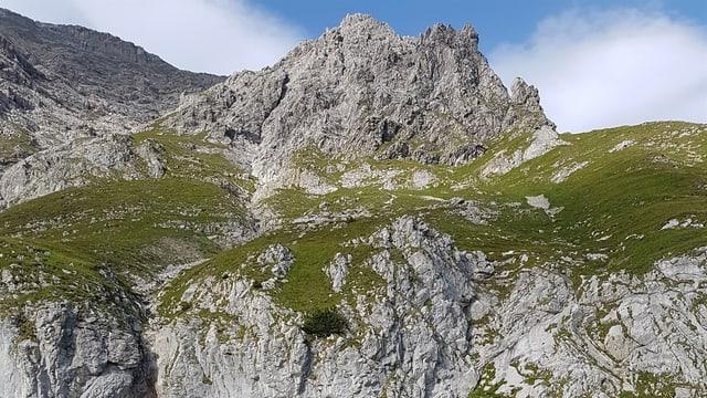 Ina cuntrada alpina.