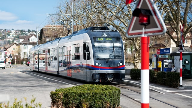 Ein Zug in Bremgarten