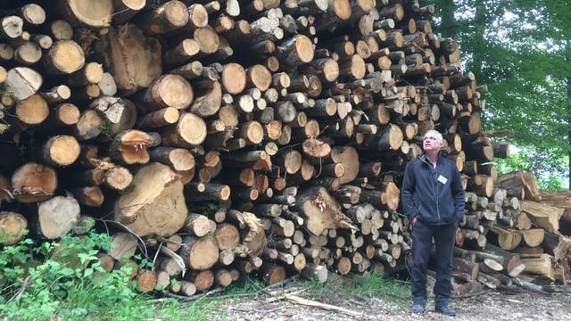 Mann vor hoher Holzbeige.