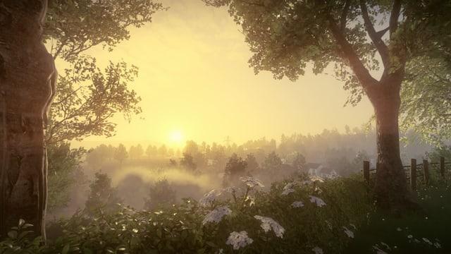 Blick von einem Hügel auf Morgennebel.
