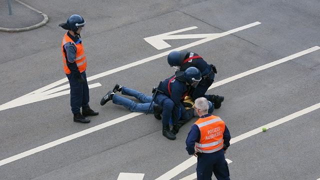 Bei einer Übung in Hitzkirch wird ein gewalttätiger Demonstrant festgenommen.