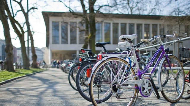 Blick auf den Eingang der Universität Basel