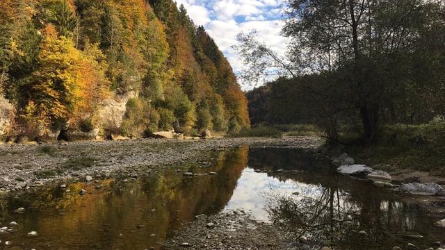 Die Sense mit Wald im Herbst.