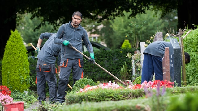 Asylbewerber führen Gartenarbeiten auf dem Friedhof aus