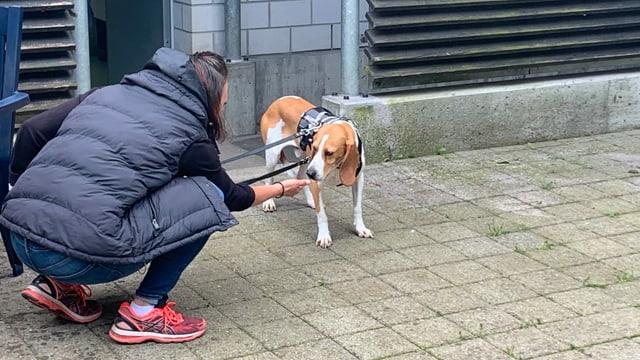 Hund Bruno mit Cornelia