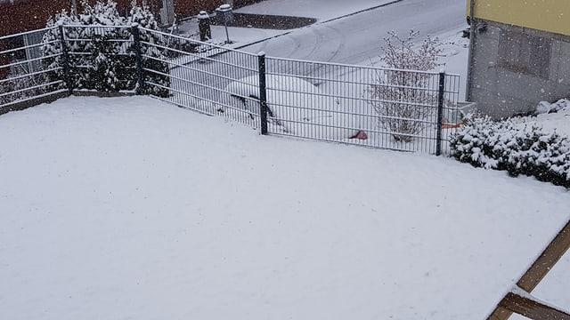 Verschneiter Garten in Waldstatt.