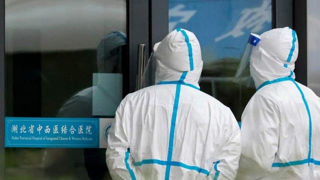 G7-Staaten fordern weitere Erkenntnisse zum Ursprung des Virus