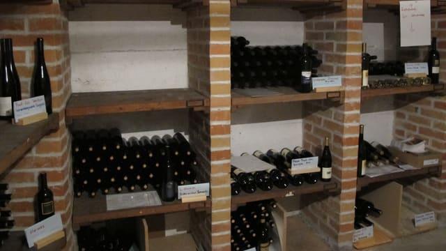 Weinkeller mit Weinflaschen