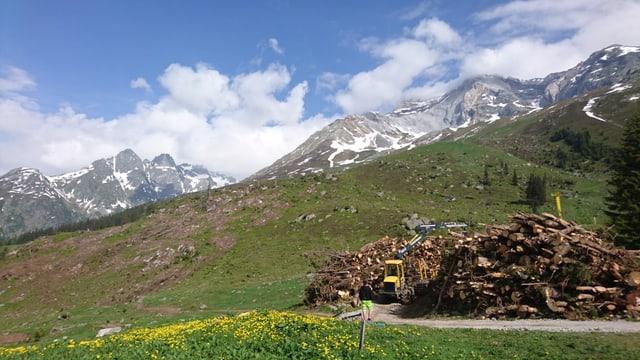 La lavina è vegnida giu da la costa dal Cavistrau pign (2. piz da dretg).