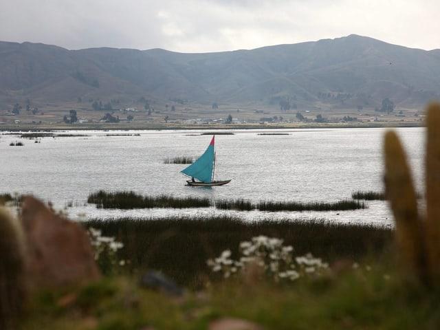 Segelboot auf dem Titicacasee