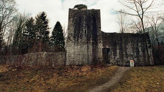 Die Ruine Weissenau am Thunersee.