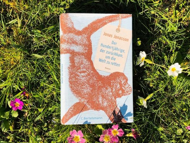 Jonas Jonassons Roman «Der Hundertjährige, der aus dem Fenster stieg und verschwand» liegt auf Gras