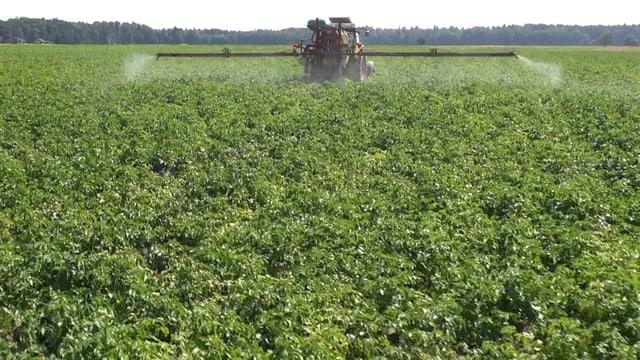Traktor versprüht Pestiziede auf ein Feld