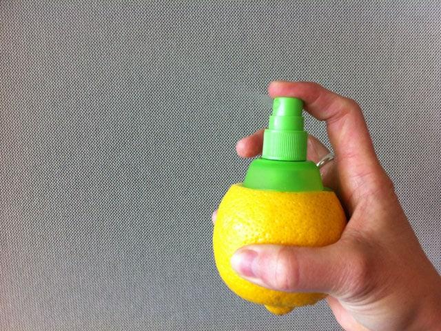 mit dem Sprühaufsatz präparierte Zitrone