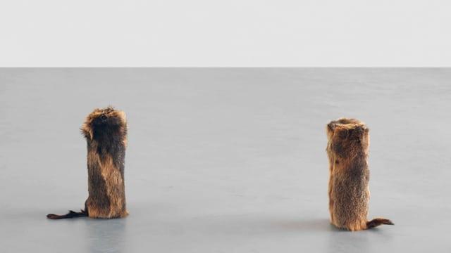 Hyperaktive Murmeltierwächter füllen zurzeit das Bündner Kunstmuseum mit Pfiffen.