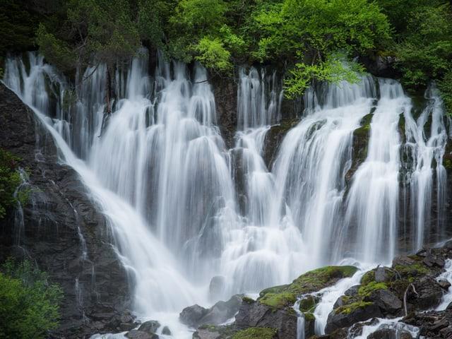 Schönes Bild eines Wasserfalls in einem Wald.