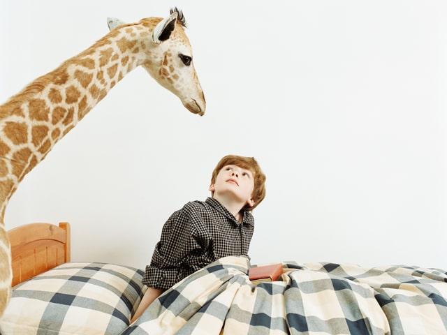 Eine Giraffe schaut auf einen Knaben im Bett herunter, der gerade aufwacht.