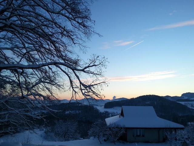 Dorf im Dunkeln mit verschneitem Baum und Haus. Die Sonne ist noch nicht aufgegangen, der Himmel klar.