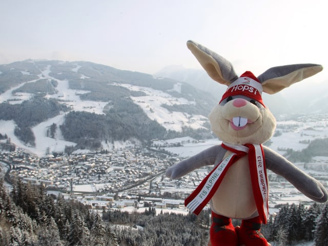 Der Hase ist zum 2. Mal nach 1982 Maskottchen in Schladming.