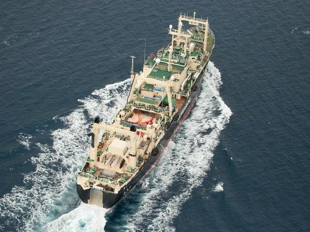Ein Japanisches Walfangschiff auf See, zu sehen ist eine Blutblache auf Deck. Das Bild wurde von einem Helikopter aus gemacht.