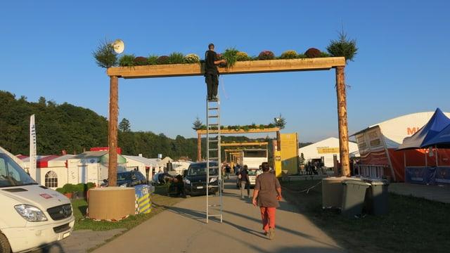 EIn Mann auf einer Leiter befestigt Pflanzen auf einem Torbogen.