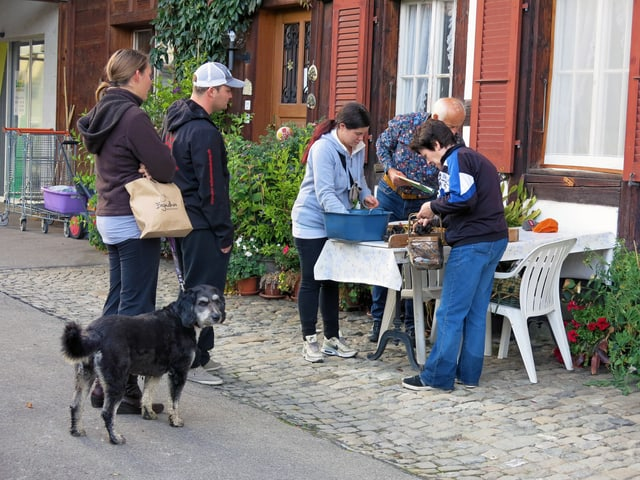 Fünf Menschen und ein Hund stehen um einen Tisch herum und sortieren Pilze.