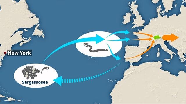 Karte Atlantik und Europa.