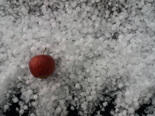 Ein Apfel liegt im Hagel.