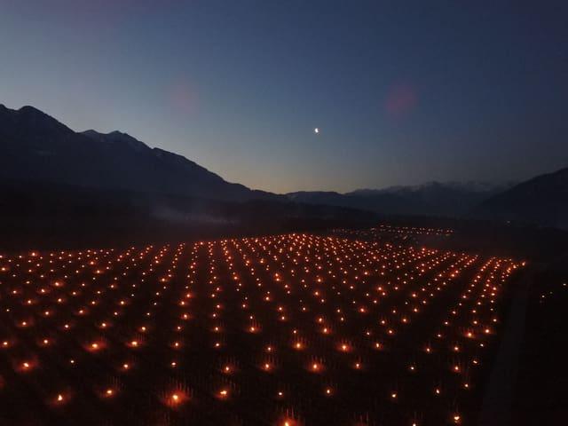 Viele Kerzen im Wingert.