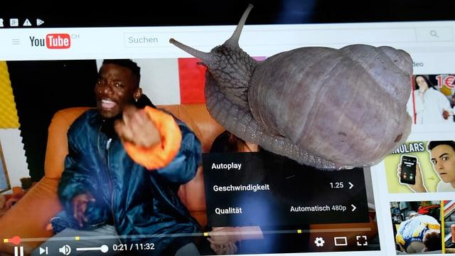 Eine Schnecke kriecht über ein Tablet, auf der Anzeige ein Youtube-Video, das mit 1.5-facher Geschwindihkeit abgespielt wird.