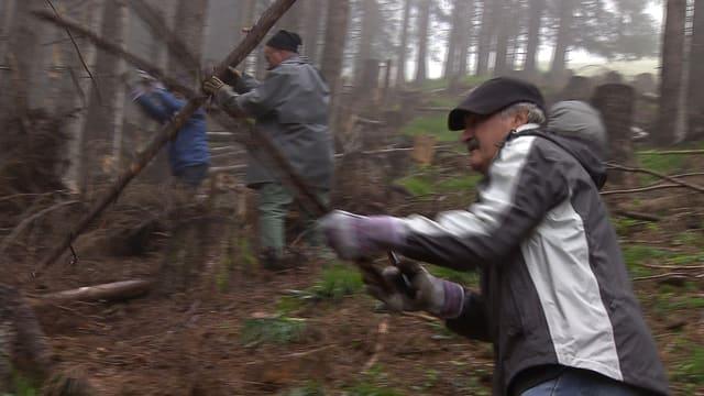 Arbeiter im Wald