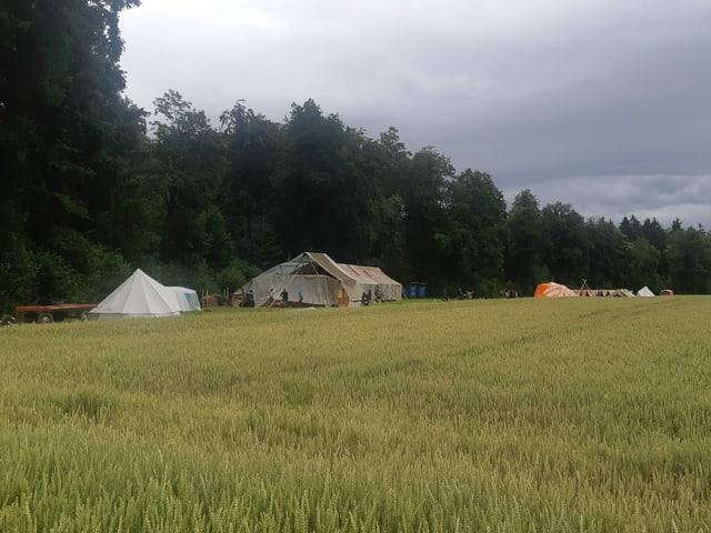 Blick über ein Feld auf Zelte