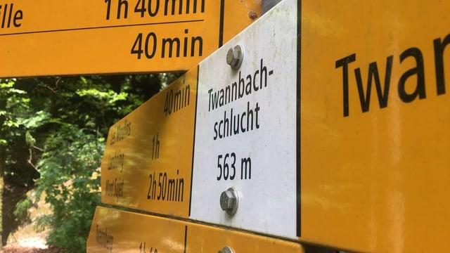 Wegweiser in der Twannbachschlucht.