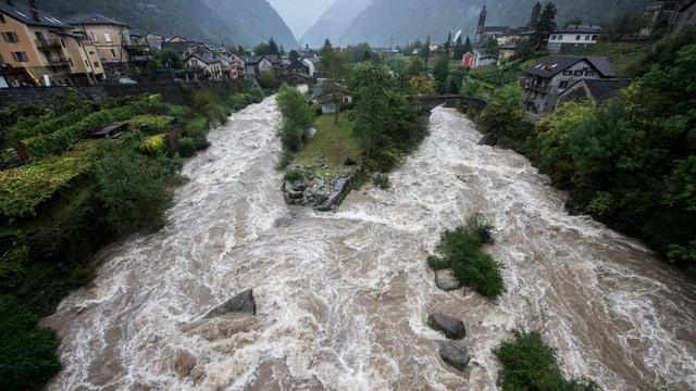 Als braune Brühe wälzt sich der Ticino durch Giornico.